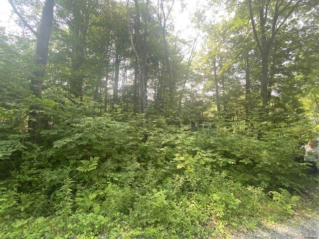 Frank Kathan Rd, Day, NY 12822 (MLS #202128094) :: Carrow Real Estate Services