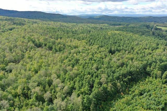 00 Highland Rd, Keeseville, NY 12944 (MLS #202128441) :: Carrow Real Estate Services