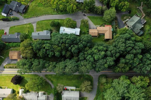 00 County Highway 31, Cooperstown, NY 13820 (MLS #202128750) :: Carrow Real Estate Services