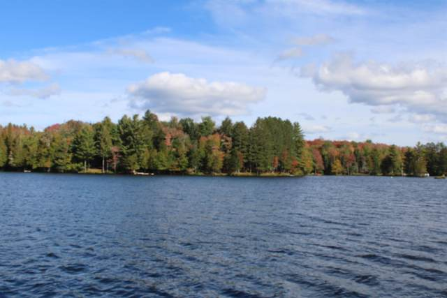 6157-1 State Route 28, Indian Lake, NY 12842 (MLS #202129457) :: 518Realty.com Inc