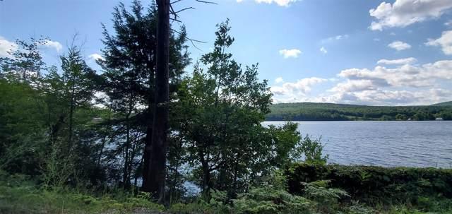 655 Palisades Rd, Brant Lake, NY 12815 (MLS #202129850) :: 518Realty.com Inc