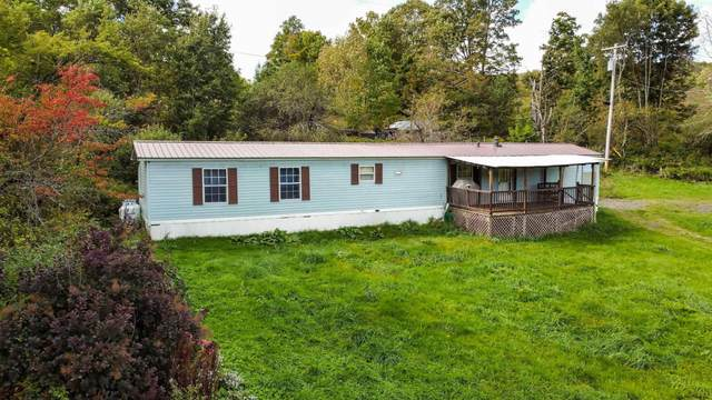 617 South America Rd, Worcester, NY 12197 (MLS #202130175) :: 518Realty.com Inc