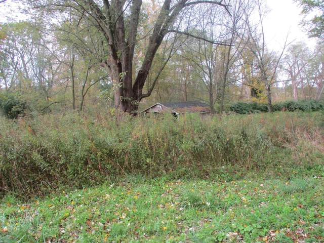 1142 State Route 30A, Esperance, NY 12066 (MLS #202130841) :: 518Realty.com Inc