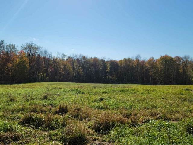 00 Locust Grove Rd, Greenfield Center, NY 12833 (MLS #202131171) :: Carrow Real Estate Services