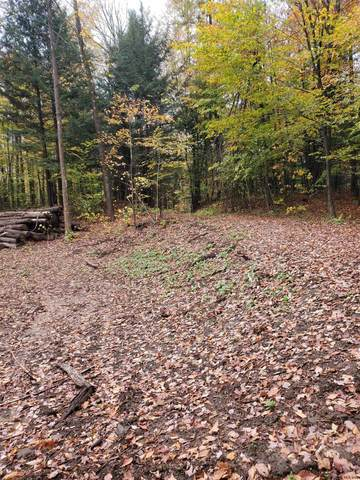 524 County Highway 116, Johnstown, NY 12095 (MLS #202131302) :: Capital Realty Experts