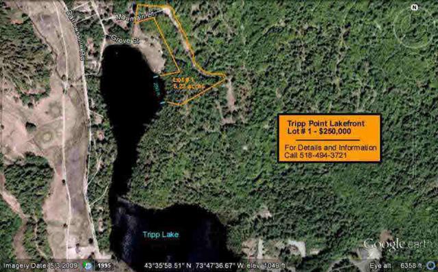 1 Mountain La, Warrensburg, NY 12885 (MLS #118864) :: 518Realty.com Inc