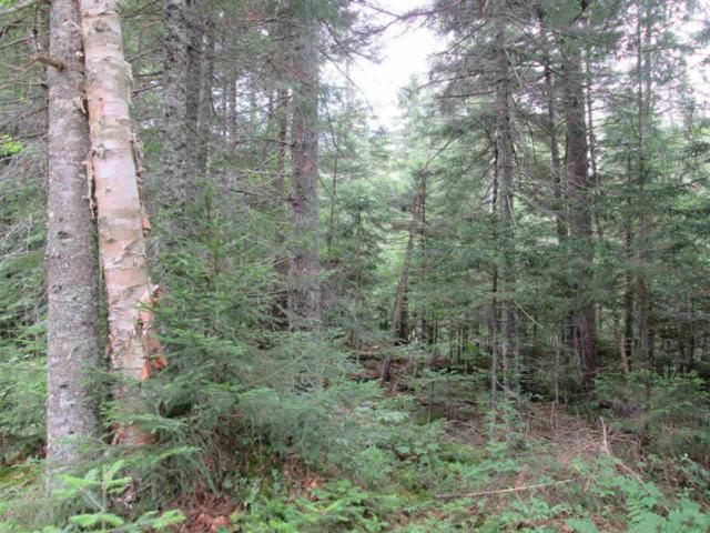 Off Route 30, Long Lake, NY 12847 (MLS #172530) :: Picket Fence Properties