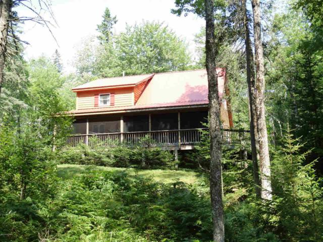 109 Hill View Ct, Indian Lake, NY 12842 (MLS #182707) :: Victoria M Gettings Team