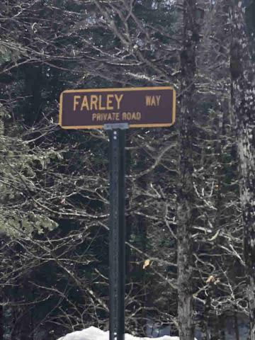 Lot 8.113 Farley Rd, Indian Lake, NY 12842 (MLS #190617) :: 518Realty.com Inc