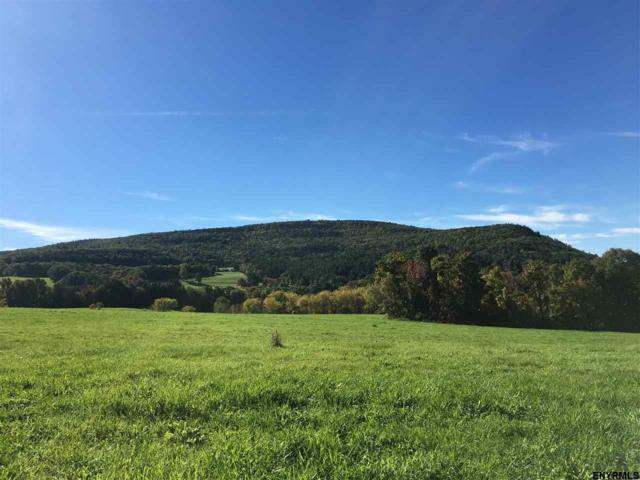 Lot 1 Colby Rd, Schoharie, NY 12157 (MLS #201817629) :: Victoria M Gettings Team