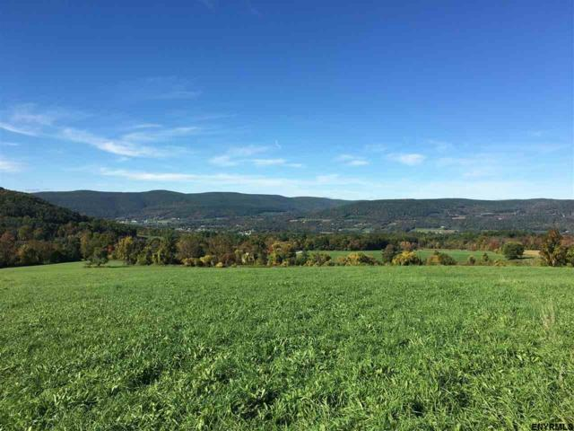 Lot 4 Colby Rd, Schoharie, NY 12157 (MLS #201817631) :: Victoria M Gettings Team