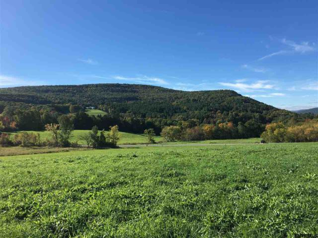 Lot 3 Colby Rd, Schoharie, NY 12157 (MLS #201817634) :: Victoria M Gettings Team