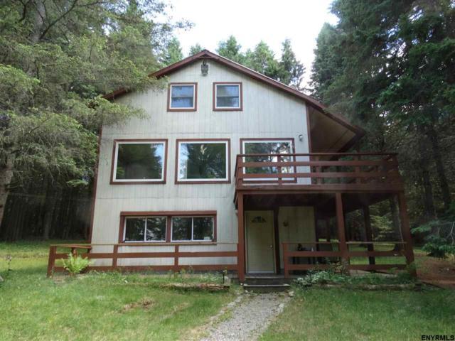 113 Jerry Savarie Rd, Indian Lake, NY 12842 (MLS #201822004) :: 518Realty.com Inc