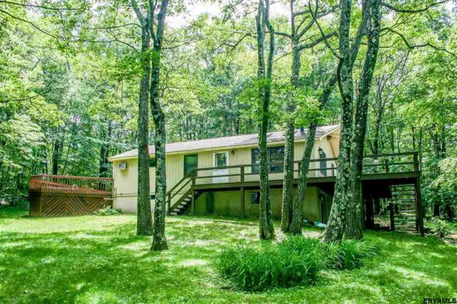 557 Route 21, Hillsdale, NY 12529 (MLS #201822490) :: 518Realty.com Inc