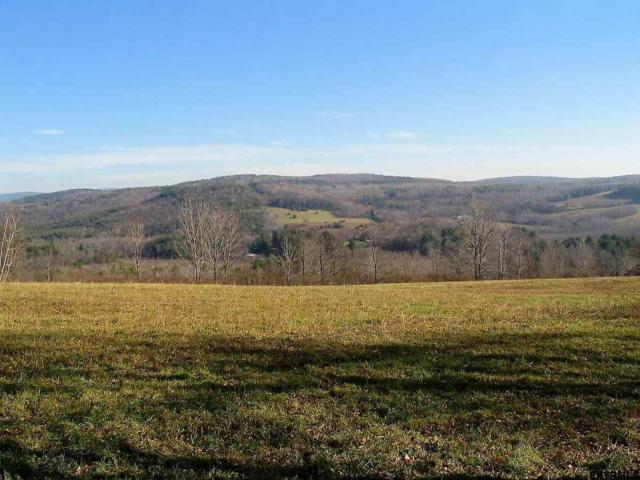 Old Gale Hill Rd, New Lebanon, NY 12212 (MLS #201825587) :: 518Realty.com Inc