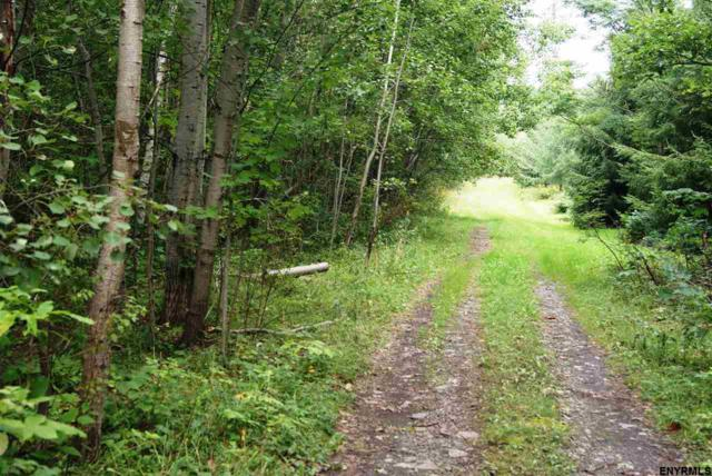 Lot 1 Congressman Dr, Summit, NY 12175 (MLS #201827153) :: Victoria M Gettings Team