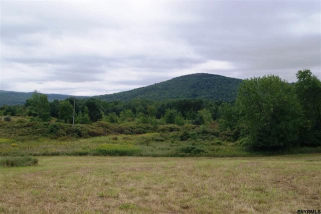 Lot 3 Congressman Dr, Summit, NY 12175 (MLS #201827755) :: Victoria M Gettings Team