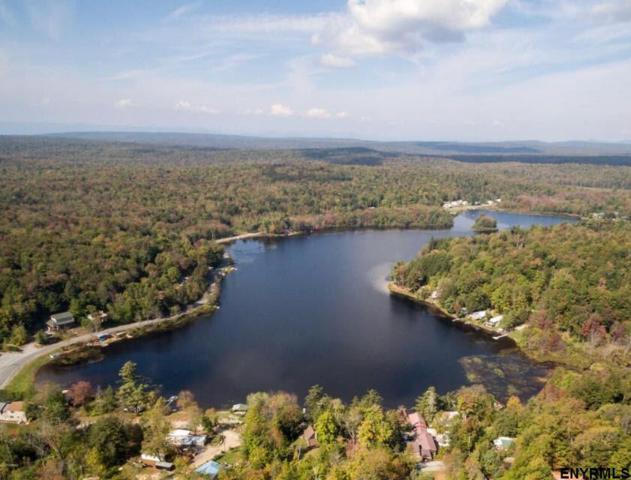 500 Lake Desolation Rd, Greenfield Center, NY 12833 (MLS #201830930) :: Weichert Realtors®, Expert Advisors