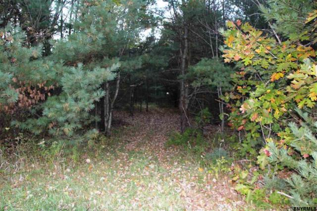Cotton Hill Rd, Middleburgh, NY 12122 (MLS #201831655) :: 518Realty.com Inc