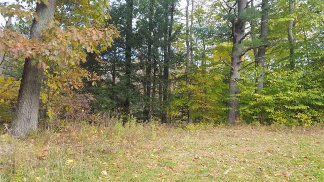 0 Sholtes Rd, Schoharie, NY 12157 (MLS #201832097) :: 518Realty.com Inc