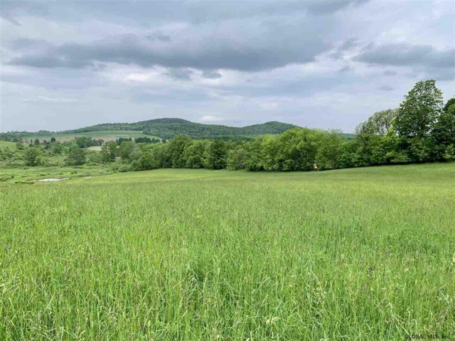 Lot 5 State Route 145, Sharon Springs, NY 13459 (MLS #201835086) :: Victoria M Gettings Team