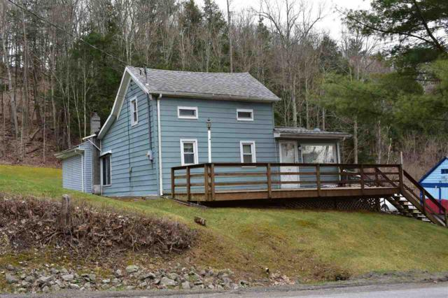 216 Cotton Hill Rd, Middleburgh, NY 12122 (MLS #201916924) :: CKM Team Realty