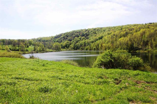 0 State Route 10, Summit, NY 12175 (MLS #201920336) :: Picket Fence Properties