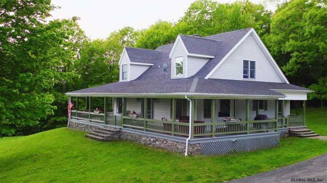 437 Rossman Fly Rd, Summit, NY 12175 (MLS #201921589) :: Picket Fence Properties
