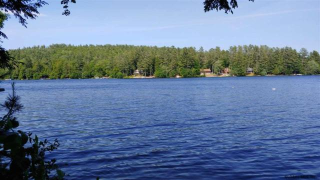 00 Birchwood Dr, Chestertown, NY 12817 (MLS #201923070) :: Picket Fence Properties