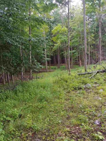County Route 403, Greenville, NY 12083 (MLS #201924999) :: Picket Fence Properties