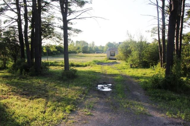 206 Kimmy Rd, Delanson, NY 12053 (MLS #201927698) :: Picket Fence Properties
