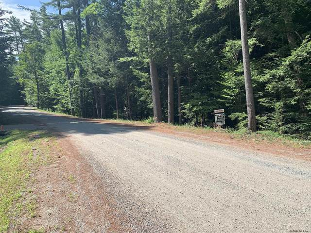 00 Loon Lake Heights Rd, Chestertown, NY 12817 (MLS #201927928) :: 518Realty.com Inc