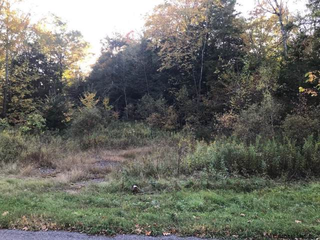 Proper Rd, Middleburgh, NY 12122 (MLS #201931541) :: Picket Fence Properties