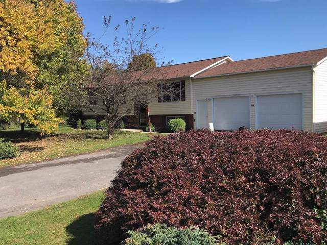126 Indian Springs La, Middleburgh, NY 12122 (MLS #201932460) :: Picket Fence Properties