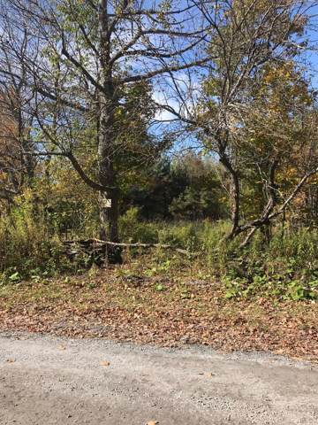Shultes Rd, Berne, NY 12023 (MLS #201932607) :: 518Realty.com Inc
