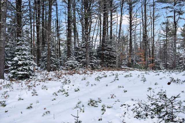 0 Lane Rd, Chestertown, NY 12817 (MLS #201934744) :: Picket Fence Properties