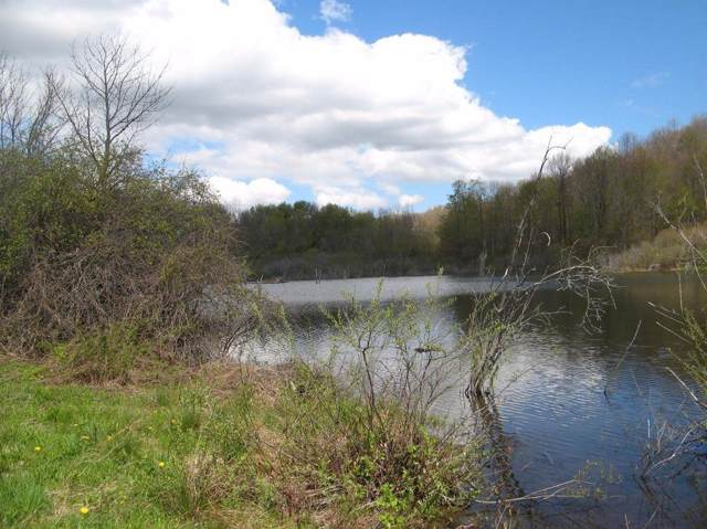 lot 1 County Highway 20, Schuyler Lake, NY 13457 (MLS #201935940) :: Picket Fence Properties