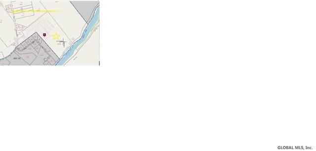 301 Bird Pond Rd, North Creek, NY 12817 (MLS #202013370) :: 518Realty.com Inc