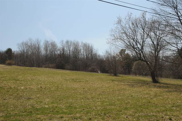 Lot #1 Homestead Dr, Pattersonville, NY 12137 (MLS #202016296) :: Carrow Real Estate Services