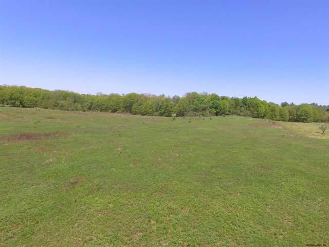 97 Ridge Rd, Stuyvesant, NY 12173 (MLS #202017960) :: 518Realty.com Inc