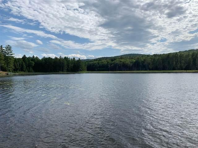 Beaver Dam Rd, Schroon Lake, NY 12870 (MLS #202026042) :: The Shannon McCarthy Team   Keller Williams Capital District