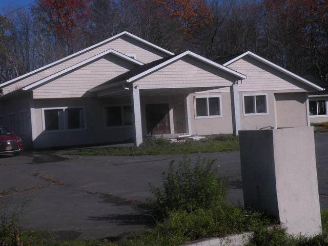 7186 State Route 32, Cairo, NY 12413 (MLS #202031705) :: The Shannon McCarthy Team | Keller Williams Capital District