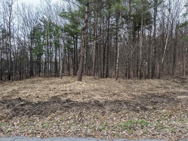 Lot 1 Verda Av, Clarksville, NY 12041 (MLS #202032557) :: 518Realty.com Inc