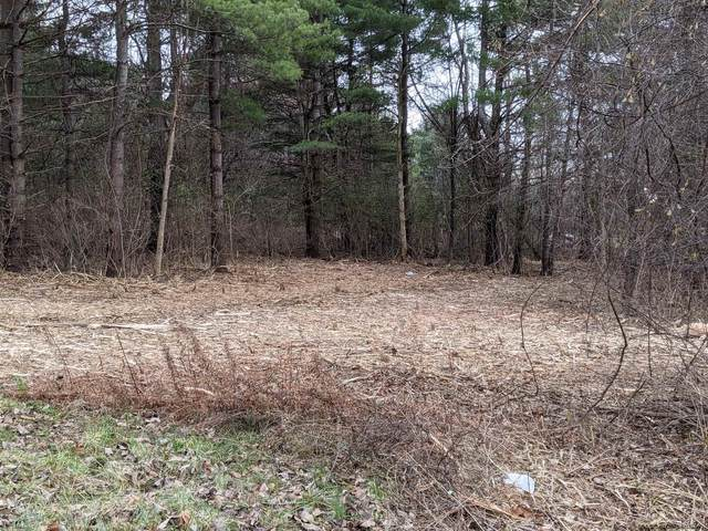 Lot 2 Verda Av, Clarksville, NY 12041 (MLS #202032558) :: 518Realty.com Inc