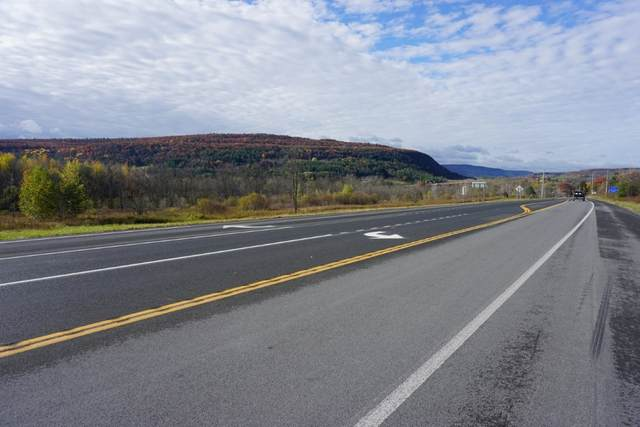 Lot 1 State Route 7, Schoharie, NY 12157 (MLS #202032681) :: 518Realty.com Inc