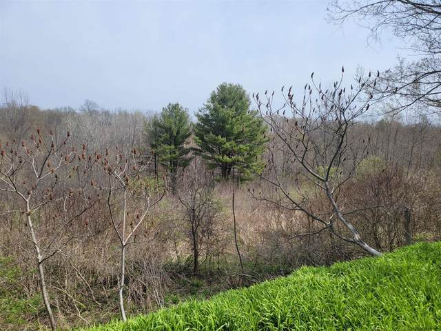 132.-1-10.2 Latimer Hill Rd, Canajoharie, NY 13317 (MLS #202113401) :: Carrow Real Estate Services