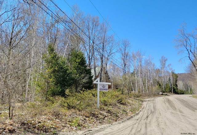 0 Mohican Trail, Johnsburg, NY 12853 (MLS #202116319) :: Carrow Real Estate Services