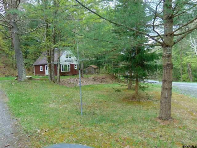 220 Brooky Hollow Rd, Middleburgh, NY 12122 (MLS #201814266) :: Victoria M Gettings Team