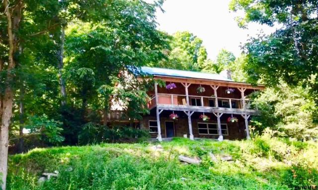 591 Saddlemire Hill Rd, Sloansville, NY 12160 (MLS #201821432) :: Victoria M Gettings Team