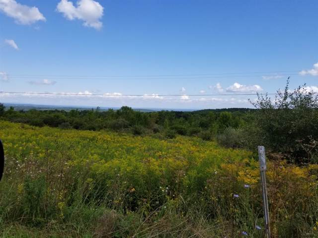 5922 Witter Rd, Altamont, NY 12009 (MLS #201930329) :: 518Realty.com Inc